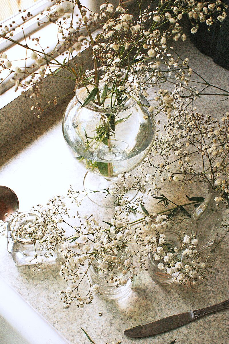 baby's breath in glass vases, B108pp2