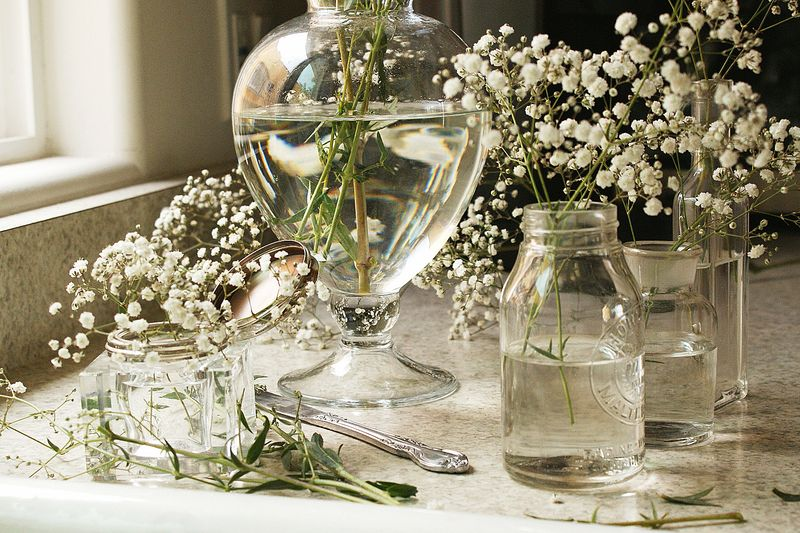 baby's breath in glass vases, B072pp