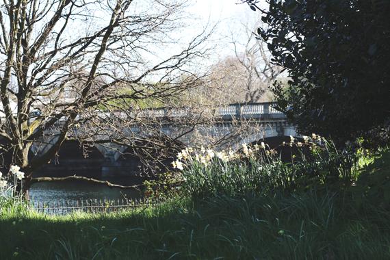 L-bridge_6112