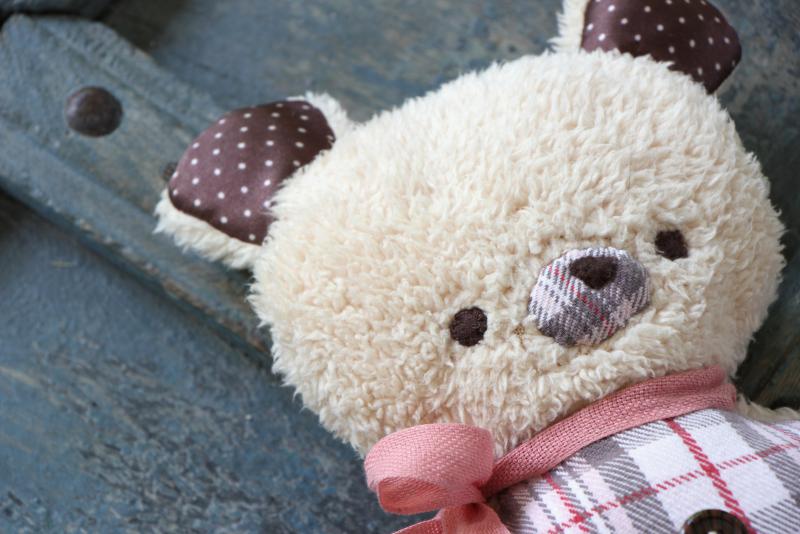 Bear-2020-05-30-12.41.30-blog
